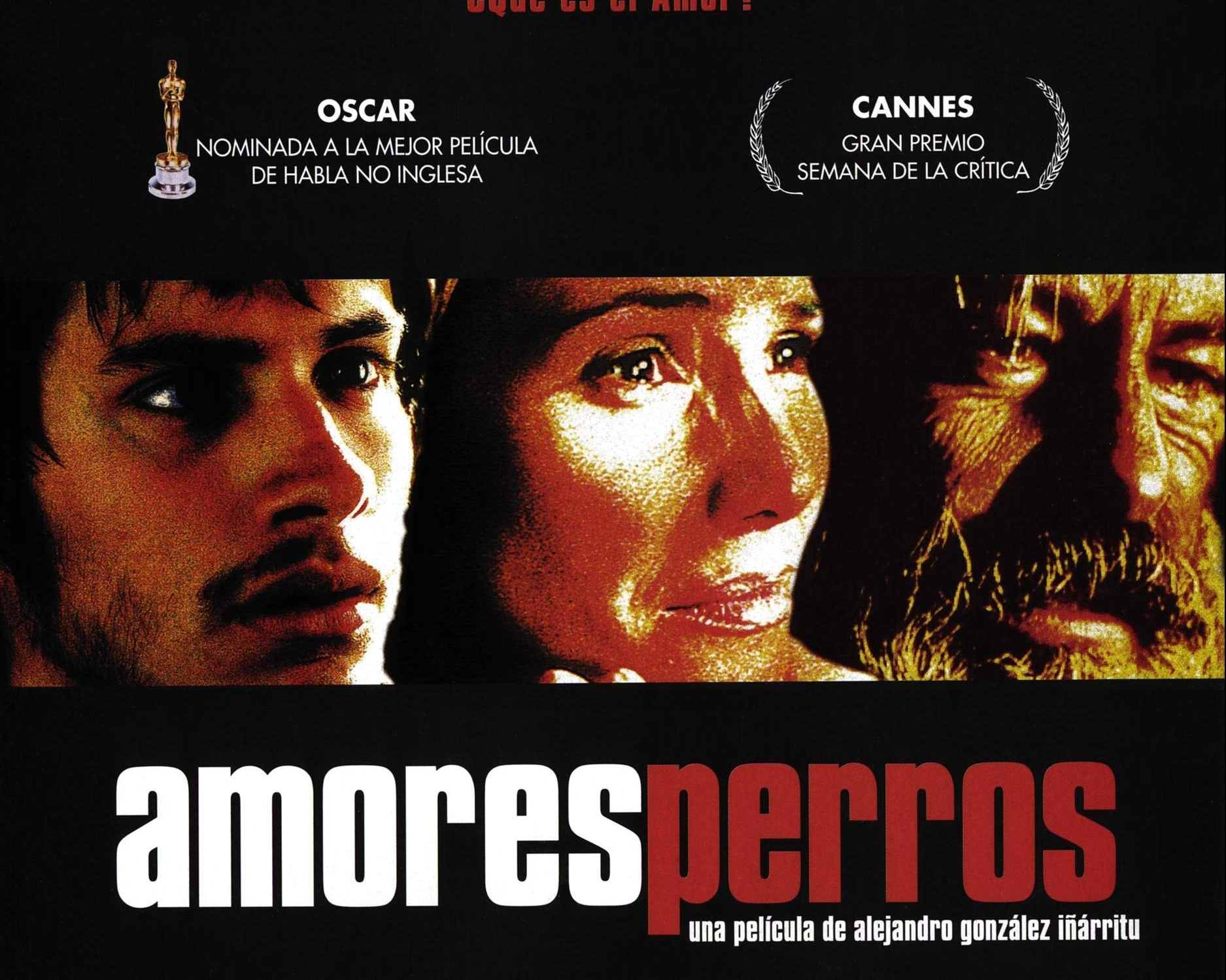 Amores Perros 2000 amores perros – on art and aesthetics