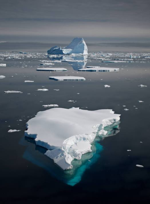 "A shot from ""Antarctica"" by Santiago Vanegas. Used with permission."