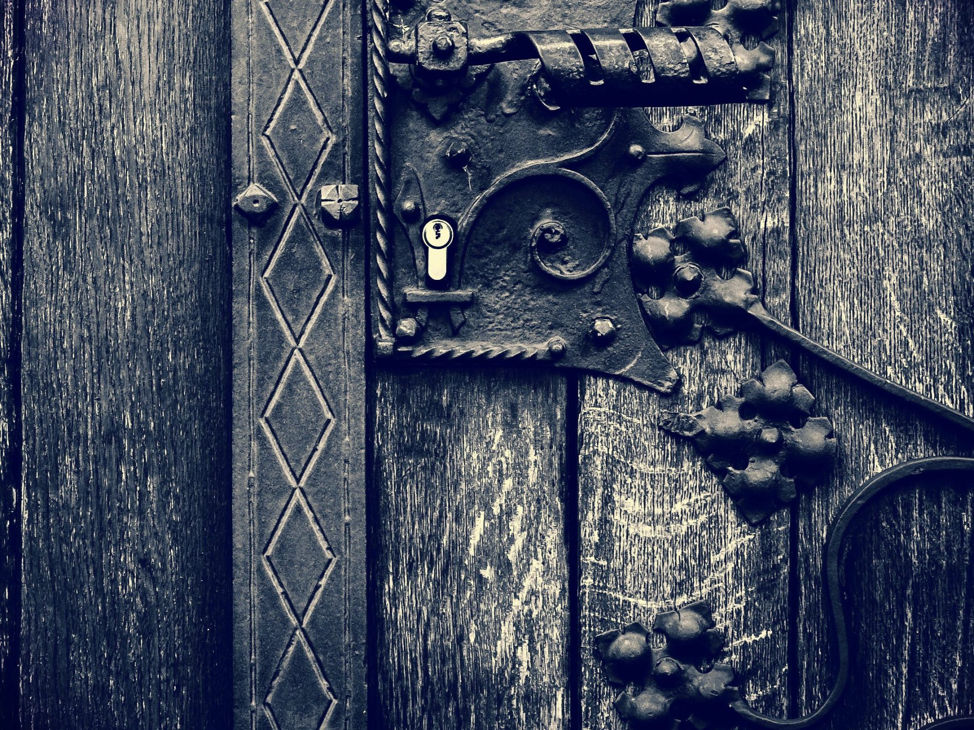 magda szabo the door epub