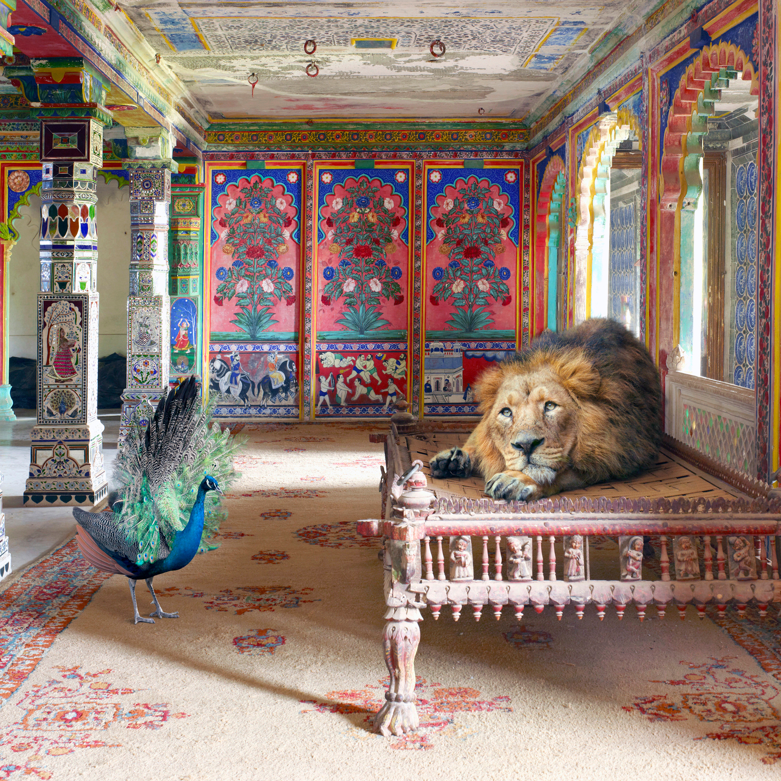 Birds, Beasts and Palaces: Glimpses of Rajasthan by Karen Knorr